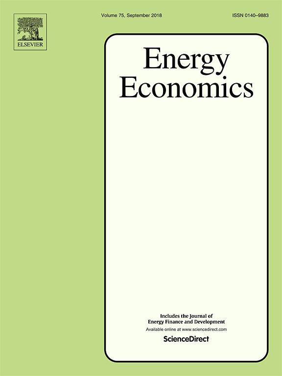 6.Energy Economics